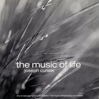 The Music of Life — Joseph Curiale