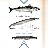 Buck The Trend — Stevie Wonder