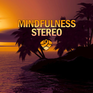 Mindfulness Stereo - The Real Deals