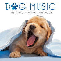 Dog Music - Relaxing Sounds for Dogs — сборник