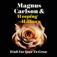 Wait for Love to Grow — Weeping Willows, Magnus Carlson