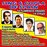 Sing & Copla of Spain - 14 Flameco Singers — сборник
