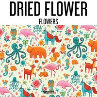 Flowers — Dried Flower