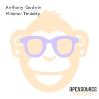 Minimal Timidity — Anthony Godwin