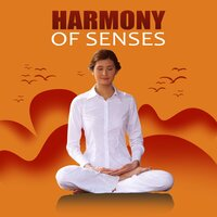 Harmony of Senses - Relaxing Nature Sounds, Calm Music for Meditation, Yoga Poses, Harmony of Senses, Stress Relief, Ocean Waves Sound, Deep Sounds for Relaxation — Deep Meditation Academy