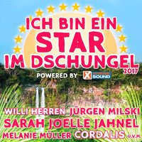 Ich bin ein Star im Dschungel 2017 powered by Xtreme Sound — сборник
