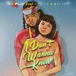 I Don't Wanna Know — Kalash, Ce'Cile, DJ Fly