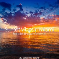 Sunset Vibes in Miami - Selected House Grooves — сборник