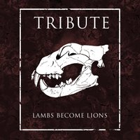 Lambs Become Lions — Tribute