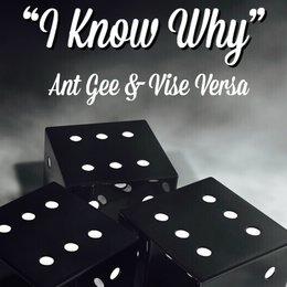 I Know Why — Vise Versa, Ant Gee