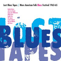 Lost Blues Tapes / More American Folk Blues Festival 1963-65 — сборник