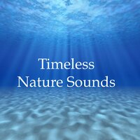 Timeless Nature Sounds - 20 Soothing Rain, Ocean and Water Melodies for Beating Stress & Anxiety, Relaxation, Meditation, Deep Focus and Better Sleep — Spa Music Paradise, Bedtime baby