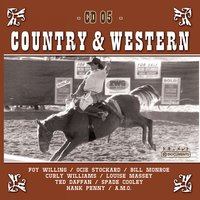Country Hits Vol. 5 — Sampler