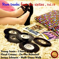Rare Tracks from the Sixties, Vol. 19 — сборник