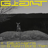 Giant — Calvin Harris, Rag'n'Bone Man