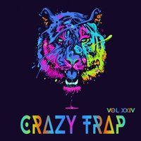 Crazy Trap Vol.24 — сборник