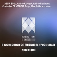 A Collection of Musicians Tpsoe Lables, Vol. One — сборник