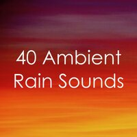 2018 Ambient Rain: 40 Rain Tracks — Rain Sounds, Calming Sounds, Nature Sounds Nature Music