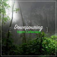 #16 Downpouring Storm Collection — Thunderstorms & Rain Sounds, Relaxing Nature Sounds Collection, Sleep Sounds Rain