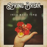 Spring Break Indie Music Tunes — сборник