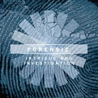 Forensic: Intrigue and Investigation — Benjamin Beiny