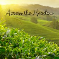 Across the Meadow — Meditation Music Zone