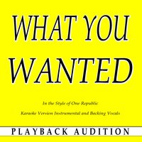What You Wanted (In the Style of One Republic) — Playback Audition