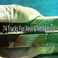 74 Tracks For Rest & Relaxation — Einstein Baby Lullaby Academy