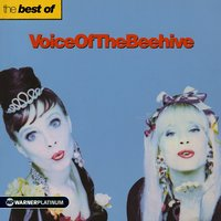 The Best of Voice Of The Beehive — Voice of the Beehive