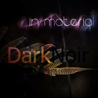 Dark Noir — In Material