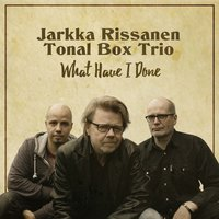 What Have I Done — Jarkka Rissanen Tonal Box Trio