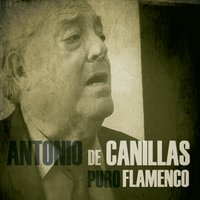 Puro Flamenco — Antonio De Canillas