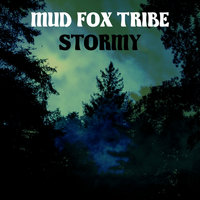 Stormy — Mud Fox Tribe