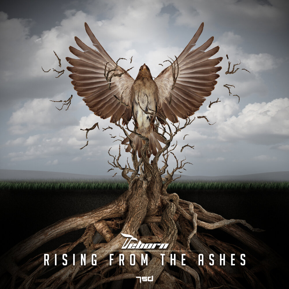 rising from the ashes 3 kansas sisters lose homes - 1000×1000