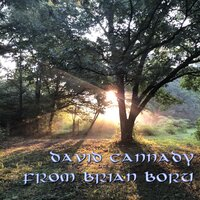 From Brian Boru — David Cannady