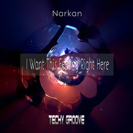 I Want This Feeling Right Here — Narkan