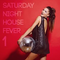 Saturday Night House Fever, Vol. 1 — сборник