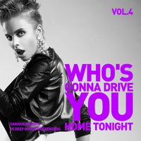 Who's Gonna Drive You Home Tonight (25 Deep-House Weekenders) Vol. 4 — сборник