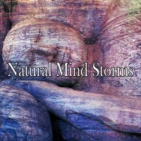 Natural Mind Storms — Thunderstorms