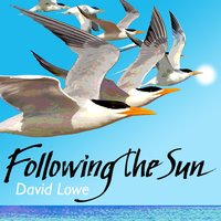 Following the Sun — David Lowe
