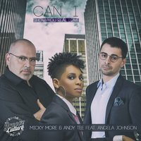 Can I — Micky More, Andy Tee, Angela Johnson