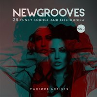 New Grooves, Vol. 3 (25 Funky Lounge & Electronica) — сборник