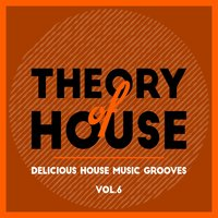 Theory of House (Delicious House Music Grooves), Vol. 6 — сборник