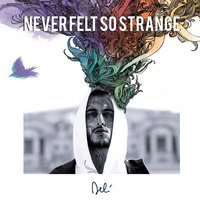 Never Felt so Strange — DELI