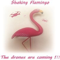 The Drones Are Coming — Shaking Flamingo