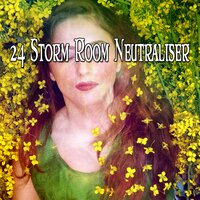 24 Storm Room Neutraliser — Rain Sounds & White Noise