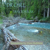 Dr. Chill: Trax to Relax — Dave Robbins