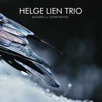 Badgers and Other Beings — Helge Lien Trio