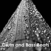 Drum and Bass Beats — сборник