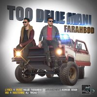 Too Delie Mani — Farahbod